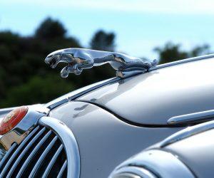 jaguar icon car